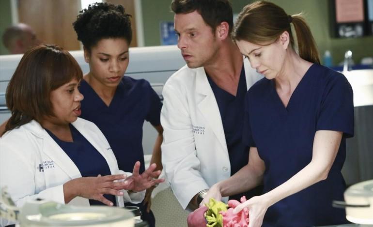 "Season 13 of Grey's Anatomy to Center on ""Originals"""