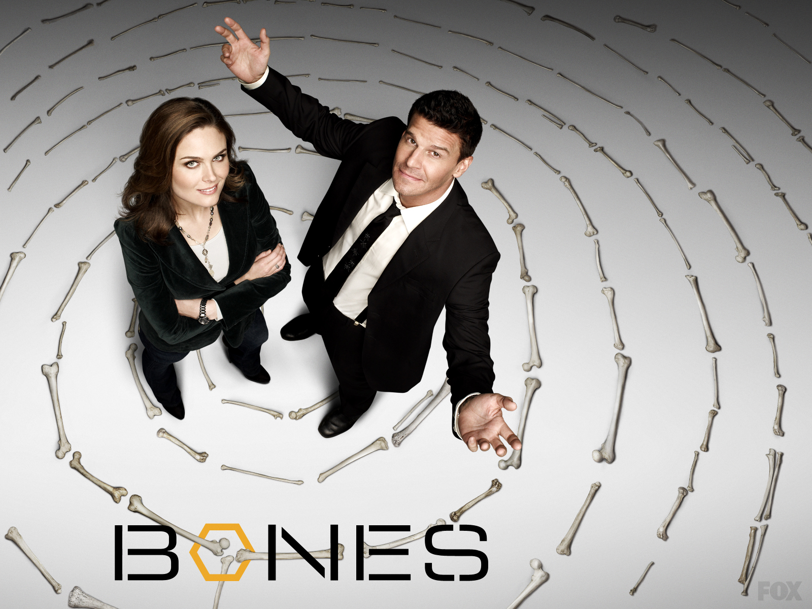 Final Season of 'Bones' Delayed Until Early 2017