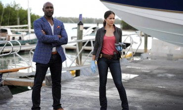 'Rosewood' Canceled by Fox after Two Seasons